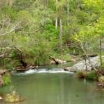 Top of Cedar Creek Falls